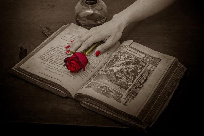 本と薔薇と手
