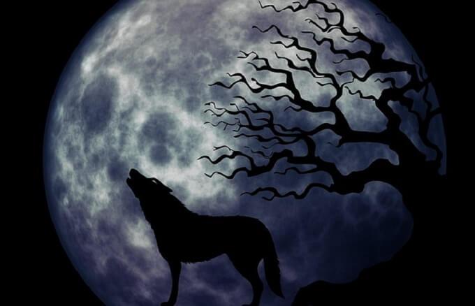 映画『人狼ゲーム』シリーズの動画をサブスク配信で無料で観るなら…